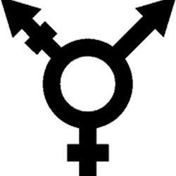 Transgenero e identidad sexual.